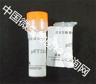 PET32a(+)